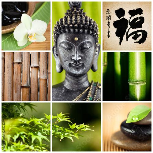 Plissee mit Motiv - bouddha bambou zen