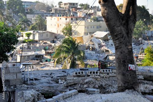 Haiti Earthquake 2010 Wallpaper Mural