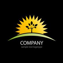 Logo Sun And Tree On Black Bac...