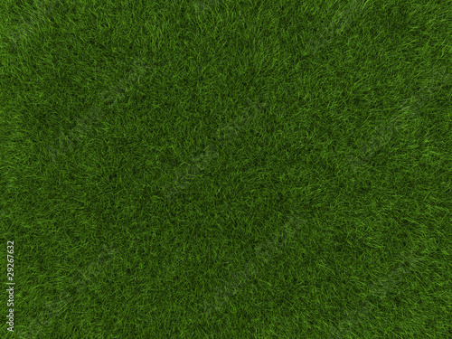 Grass texture © Cla78