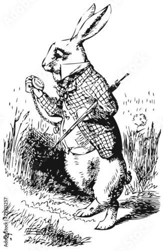 Naklejka premium Biały królik z zegarkiem Alice Wonderland