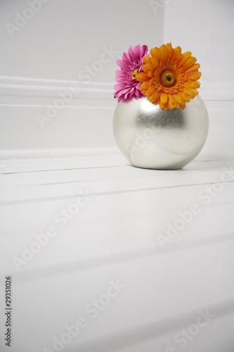 Foto-Lamellen (Lamellen ohne Schiene) - Flowers on white - Shabby Chic (von dobbieandrew)