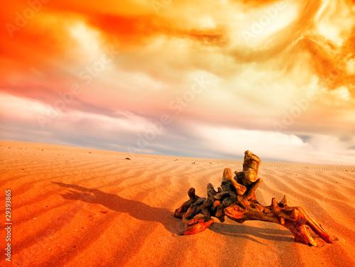 Foto op Canvas Baksteen desert landscape