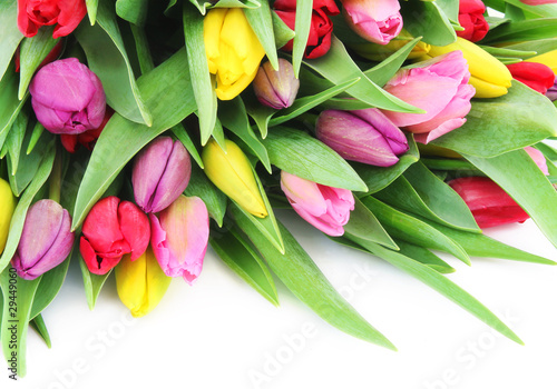 Spring tulip flowers Wallpaper Mural