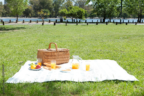 Spoed Foto op Canvas Picknick Picnic in a park