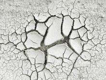 Dry Earth Cracked