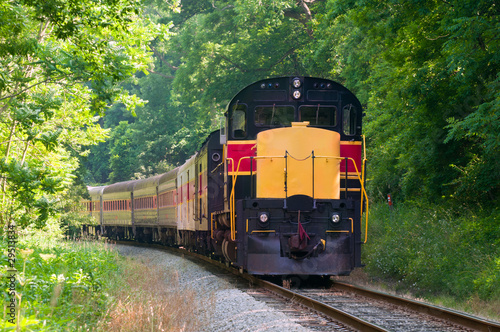Scenic passenger train rounding a curve in a forest