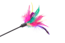 Feathered Pole Cat Toy On White Background