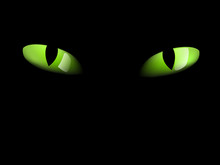 Green Cat Eyes In Darkness - Photo-real