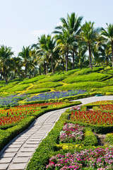 FototapetaBeautiful gardens