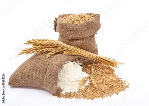 Vászonkép Flour and wheat grain