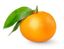 Isolated Tangerine. One Tangerine Or Mandarin Orange Fruit With Leaf Isolated On White Background