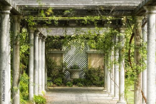 chodnik-w-magicznym-ogrodzie-kwiatowym
