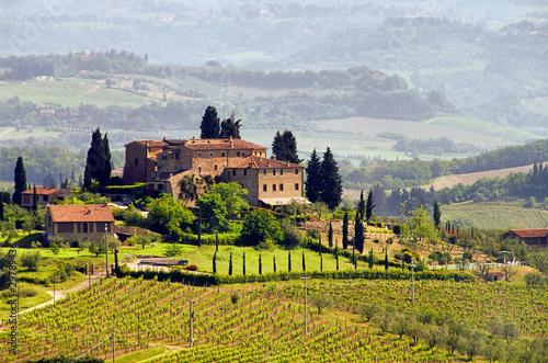 Foto op Aluminium Toscane Toskana Weingut - Tuscany vineyard 03
