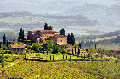 Foto op Plexiglas Toscane Toskana Weingut - Tuscany vineyard 03
