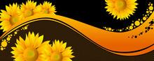 Beautiful Yellow Sunflowers On...
