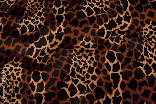 Fotografie, Obraz  Leopard Pelz