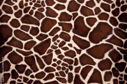 Foto op Aluminium Giraffe Giraffe Pelz