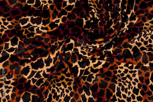 Fotografie, Obraz  Afrikanischer Leopard