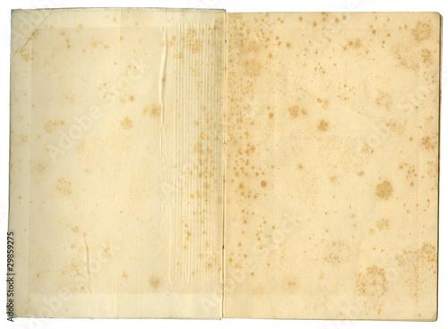 Libro antiguo Canvas Print