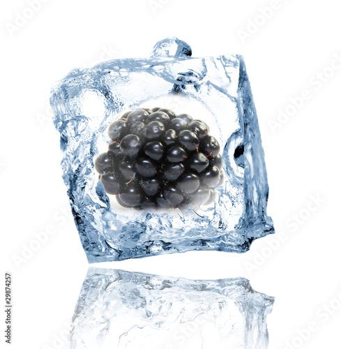 Poster Dans la glace Blackberry in ice cube