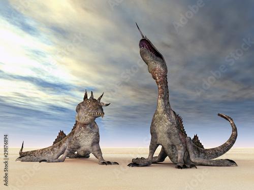 Poster Draken Phantastische Kreaturen