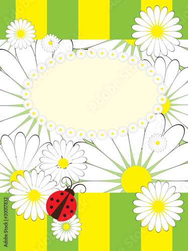 Fotobehang Lieveheersbeestjes Greeting card with summer motives pattern