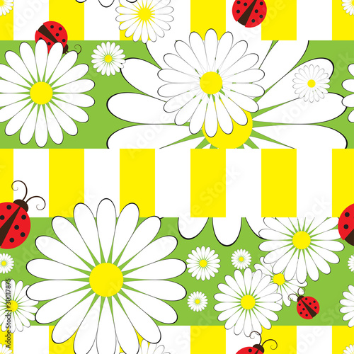Poster Coccinelles Seamless pattern with ladybird and chamomile