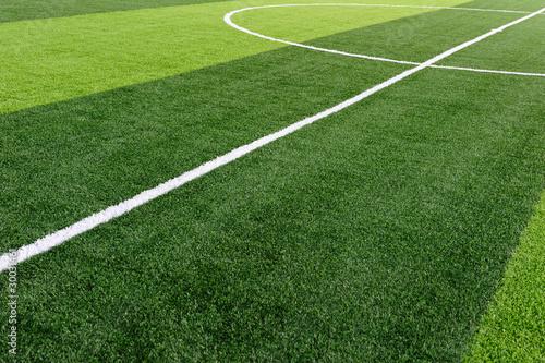 Fotografie, Obraz  Football Field
