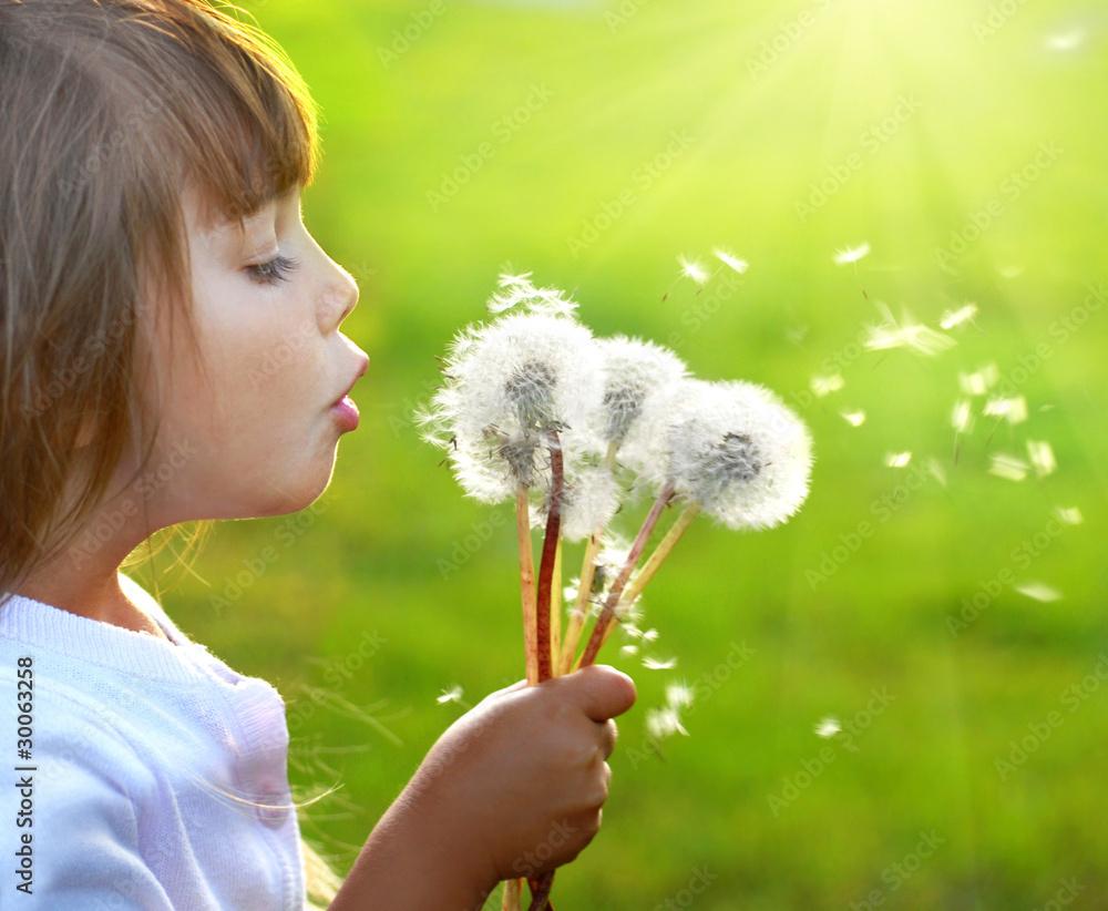 Fototapety, obrazy: Summer wishes