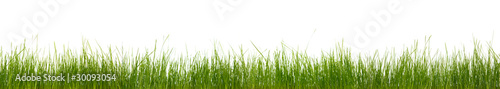 Photo sur Toile Herbe Extra large horizontal strip of grass, dirt, and roots isolated