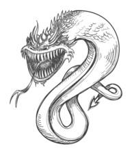 A Fierce Dragon Pencil Drawing