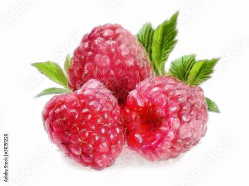 Poster Fruit Raspberry - 3 Raspberries