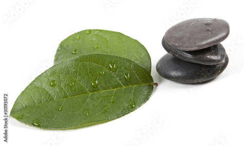 Fototapety, obrazy: zen stones and leaves with water drops, isolated. spa background