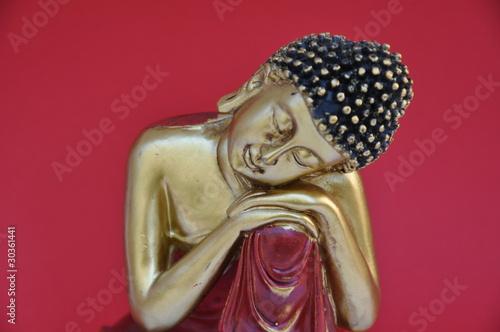 Doppelrollo mit Motiv - ruhender Buddha (von Renate Flormann)