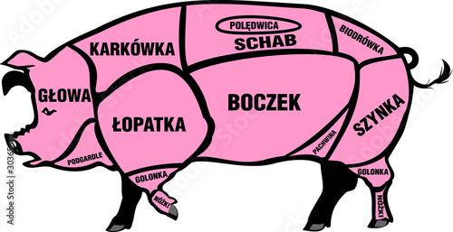 tusza wieprzowa - polska - fototapety na wymiar