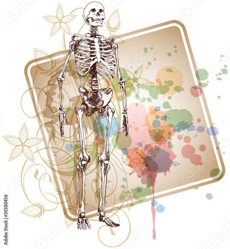 Printed kitchen splashbacks Watercolor skull Skeleton sketch & floral calligraphy ornament