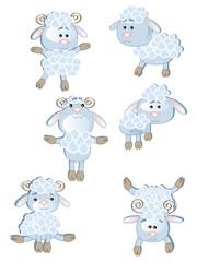 Set sheeps