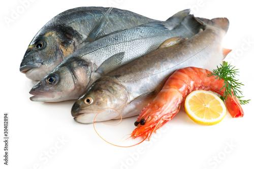Fotografía  Sea food