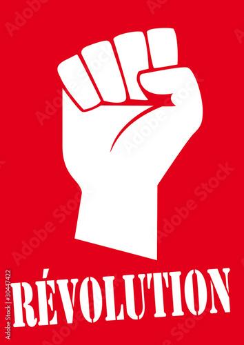 Tela  REVOLUTION_Poing