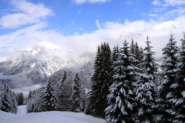 Obraz na Szkle Drzewa Winterlandschaft am Arlberg