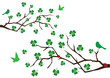 vector branches with shamrock and green birds