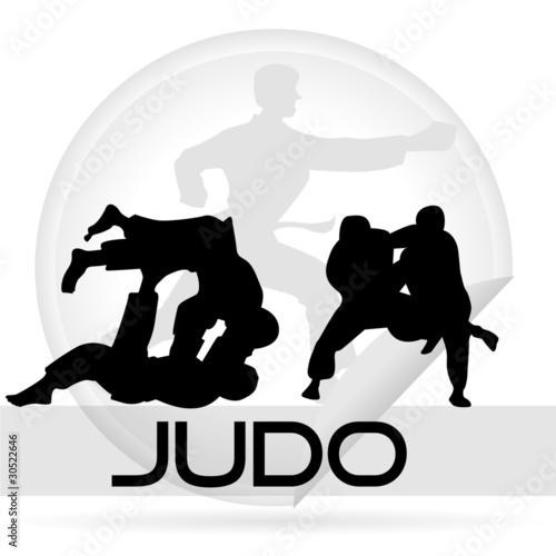 Fotografie, Obraz  icône judo