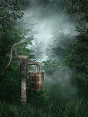 Fototapeta na wymiar Deszczowy las ze starą pompą