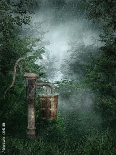 Obrazy na płótnie Canvas Deszczowy las ze starą pompą