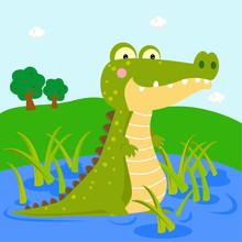 Crocodile On The River