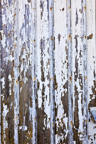 Fotobehang Berkbosje An unpainted wall