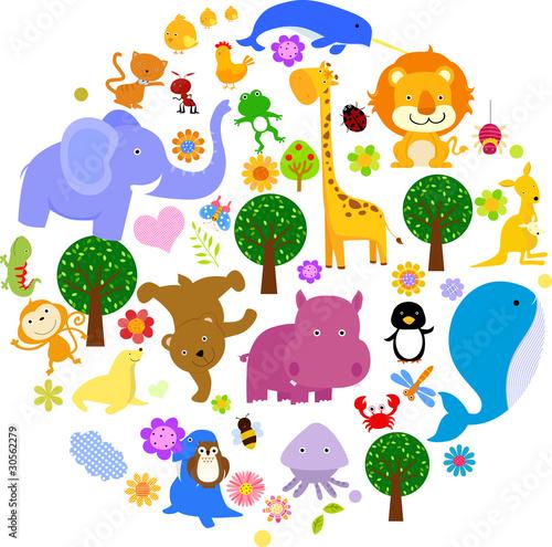 zwierze
