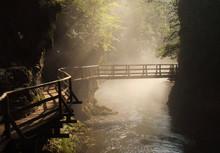 Wooden Bridge, Sunny Morning, ...