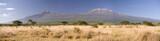 Fototapeta Sawanna - Kilimanjaro Mountain